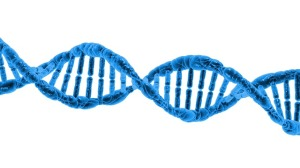dna and low oxygen