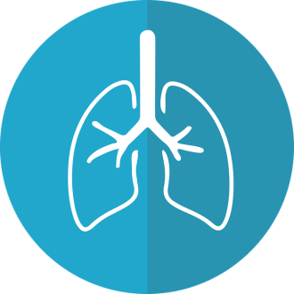 lungs-2803208_960_720